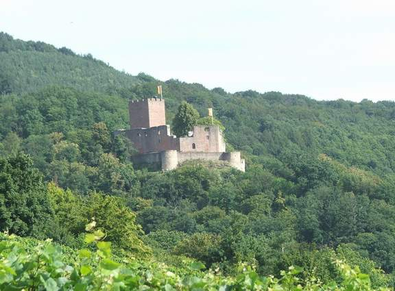 Wandern Pfalz - Reisen, Urlaub, Freizeit im Pfälzerwald